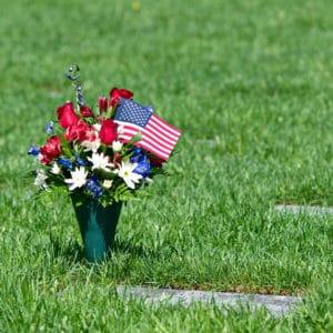 Cemetery Cone Flowers