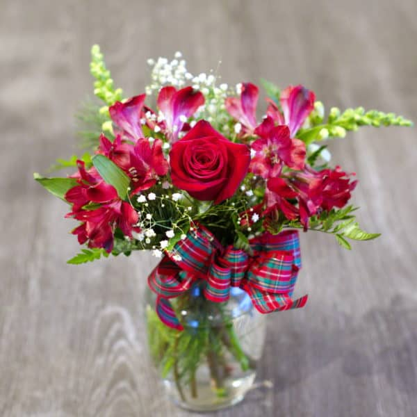 Christmas Roses with a Bow