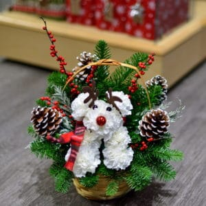 Christmas Carnation Puppy