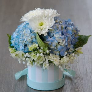 Hydrangeas in a Hat Box