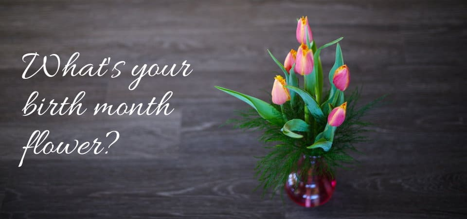 Flowers for your Birth Month