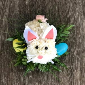 Carnation Bunny