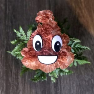 Carnation Poo Emoji