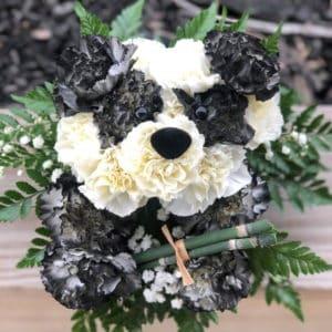 Carnation Panda