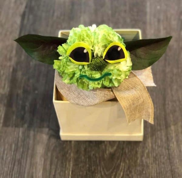 Carnation Yoda