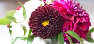 Flower Bouquet from Local Florist